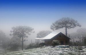 Clima de Brasil
