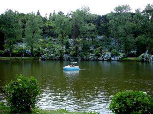 Lago Negro en invierno